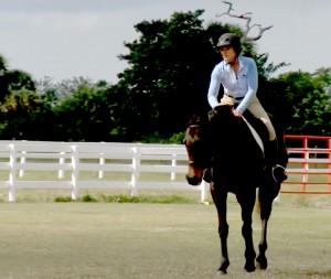 CBS12 Equine Story - Screen Shot - Amanda - 4-19